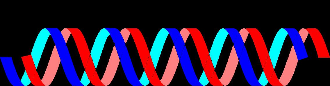 DNAが遺伝子の本体!DNAで世界を変える3つの利用方法!