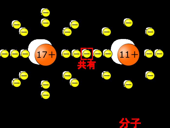 【中学3年】原子の構造を理解すればイオンが完璧に理解できる!【原子とイオンの関係とは!?】